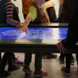 table tactile@Cité de la Préhistoire-Orgnac-Ardèche©M.Le Dain (12)